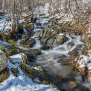 1ère neige-Al703851