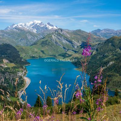 Lac de Roselend - Al706521