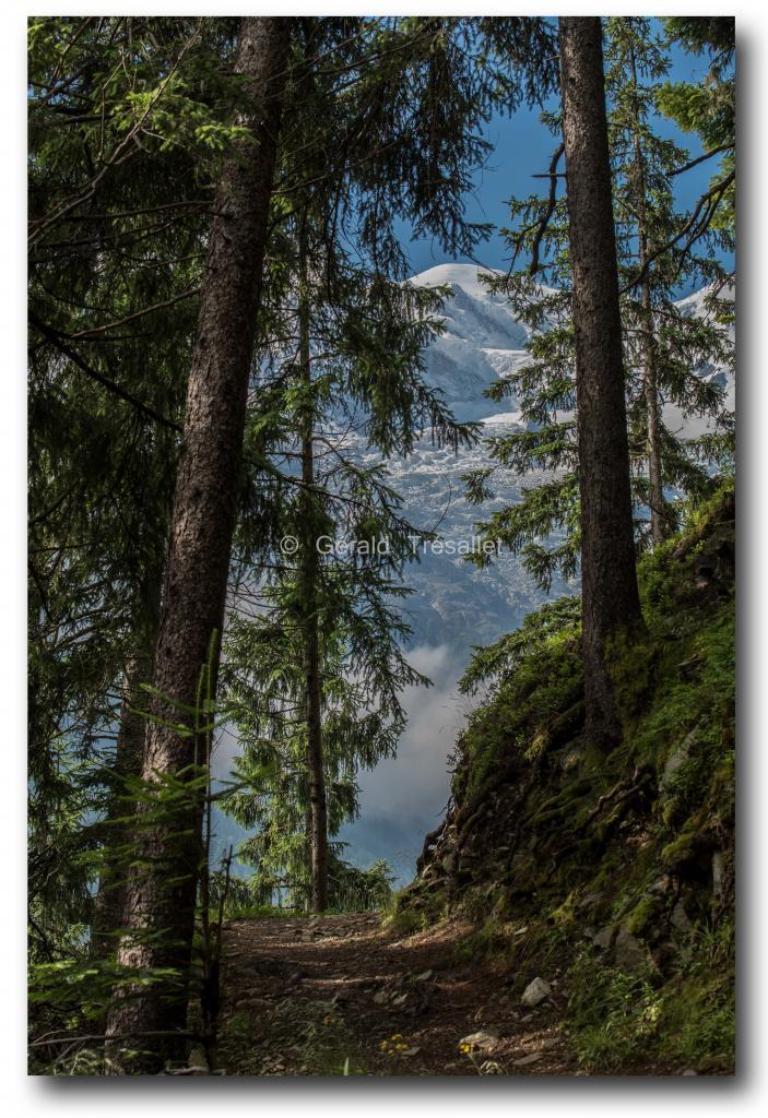 Le Mont-Blanc-nik2214