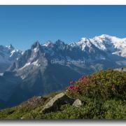 Les Grandes Jorasses, la Mer de Glace et le Mont-Blanc