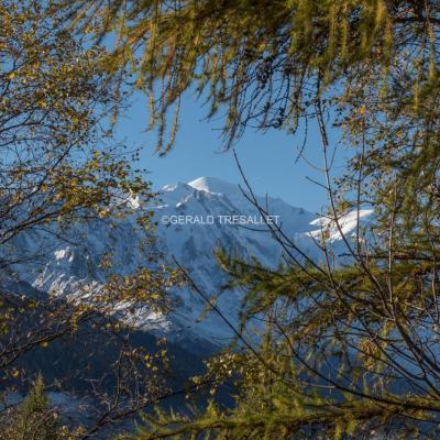 Le Mont-Blanc-nik5123