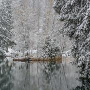 Lac des Gaillants_NIK8112